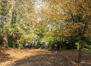 Herfst in het Citadelpark