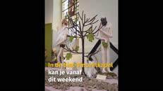GIK Van Eyck senior.mp4