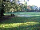 116 Park De Vijvers (6).jpg