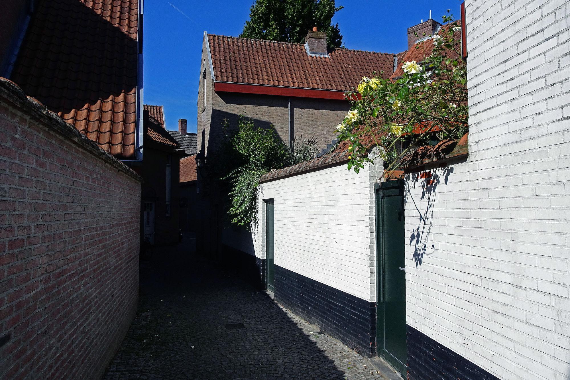 Zwaanstraat