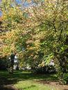 109 Parkje Burggravenlaan (4).jpg