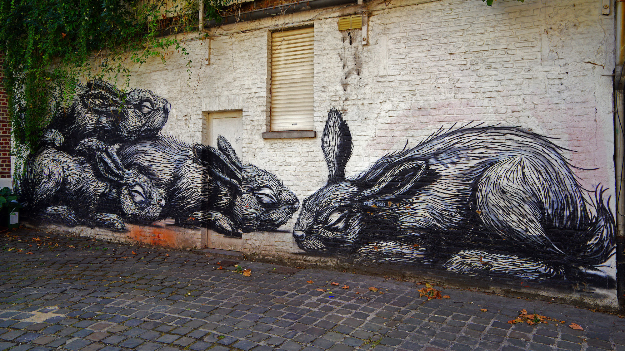 graffiti konijnen
