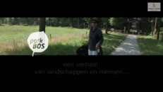 Parkbos AVS_Deel_5_WMV9_Widescreen_640x360_intranet+WM.wmv