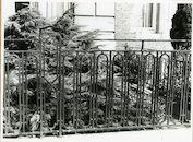 Gent: Congreslaan 43: hek, 1979