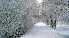 Bourgoyen  (winter)
