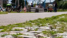 20210817_Oude Dokken_Houtdok_Openbaar Domein_Zitbanken_groen_wandelaars_fietsers_0038.jpg