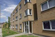 2019-07-01 Nieuw Gent prospectie met Wannes_stadsvernieuwing_IMG_0207-3.jpg
