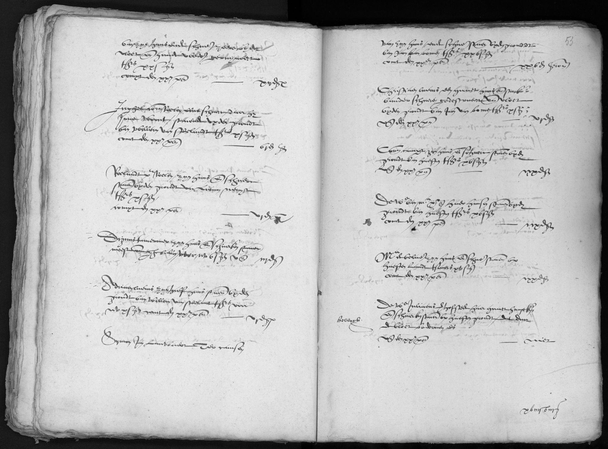 Penningkohier van Saaftinge, 1571