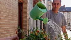 2020-05-29 Ledeberg_Dag van de Buren_bloemen__DSC0467.jpg