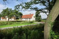agrarisch landschap rond drongen (8)©Layla Aerts.jpg