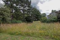 2019-07-02 Muide Meulestede prospectie Wannes_stadsvernieuwing_IMG_0354-2.jpg