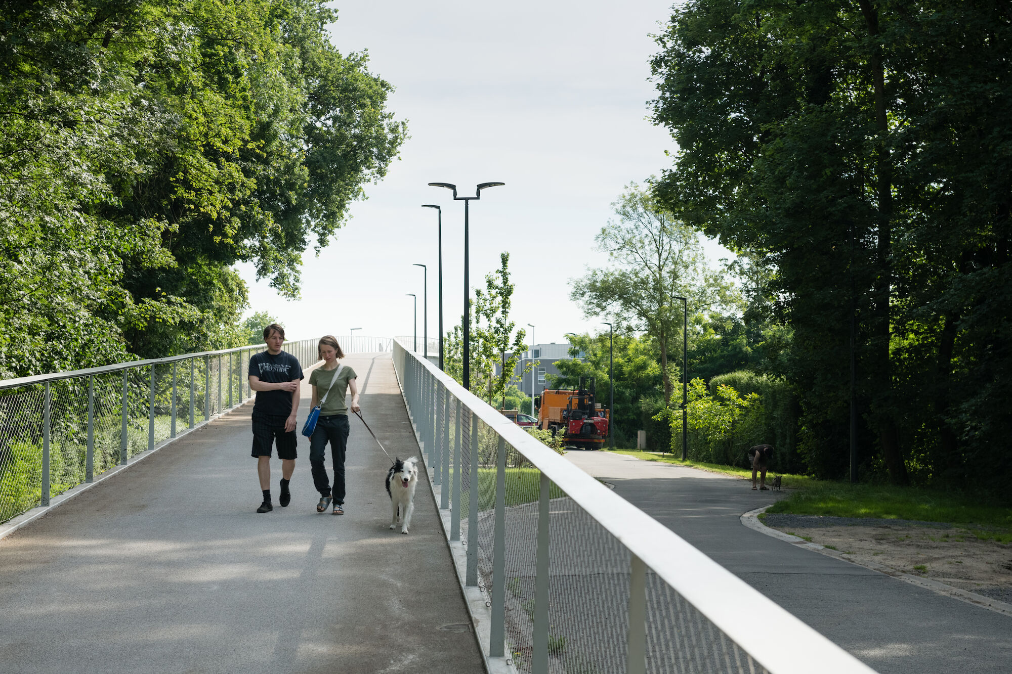 de parkbosbruggen (fiets- en wandelbruggen)