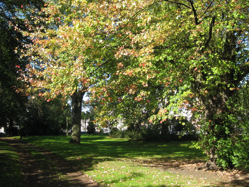109 Parkje Burggravenlaan (3).jpg