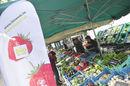 20080613_bio-markt.jpg