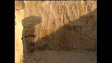 archeologen,siegfried.mov
