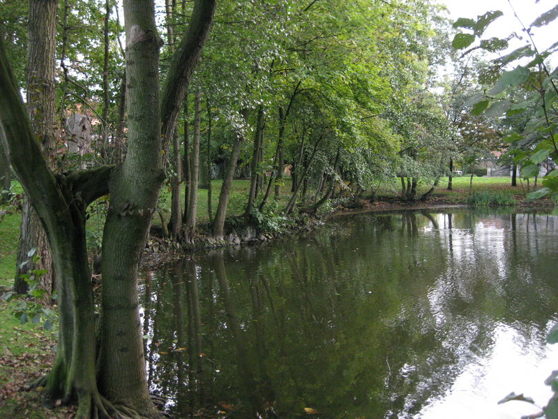 115 Park De Pélichy (2).jpg