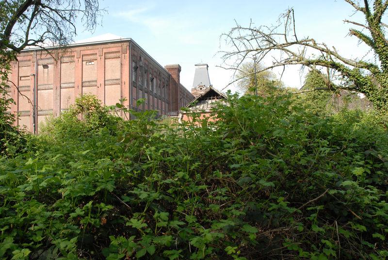 065 Bloemekenspark (5).jpg