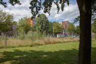2019-07-01 Nieuw Gent prospectie met Wannes_stadsvernieuwing_IMG_0215-3.jpg
