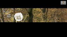 Parkbos AVS_Deel_2_WMV9_Widescreen_640x360_intranet+WM.wmv