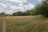 2019-07-02 Muide Meulestede prospectie Wannes_stadsvernieuwing_IMG_0342-2.jpg