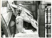 Gent: Gaspar De Craeyerstraat 2: Leopoldskazerne: gevelbeeld: leeuw met vaandel en schild, 1979
