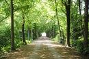 116 Park De Vijvers (2).JPG