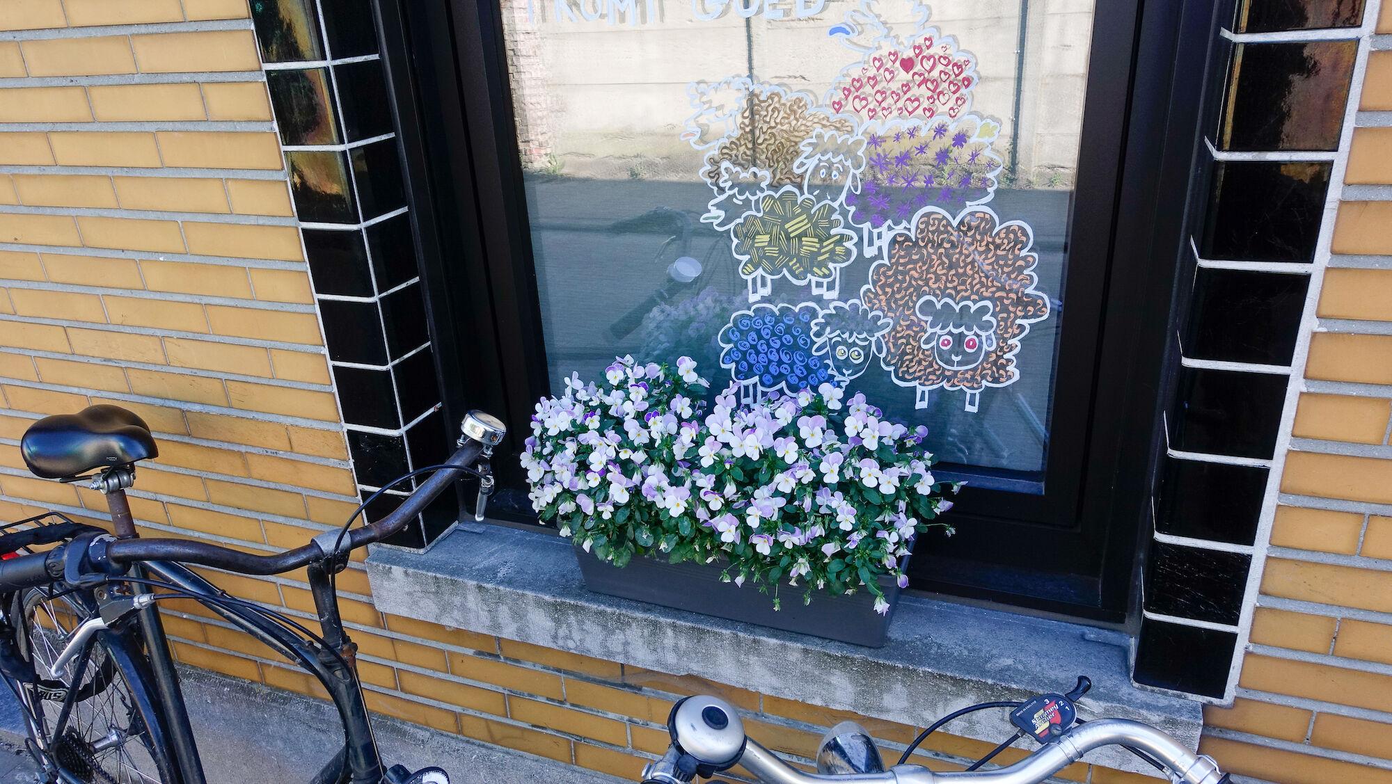 2020-05-29 Ledeberg_Dag van de Buren_bloemen__DSC0487.jpg
