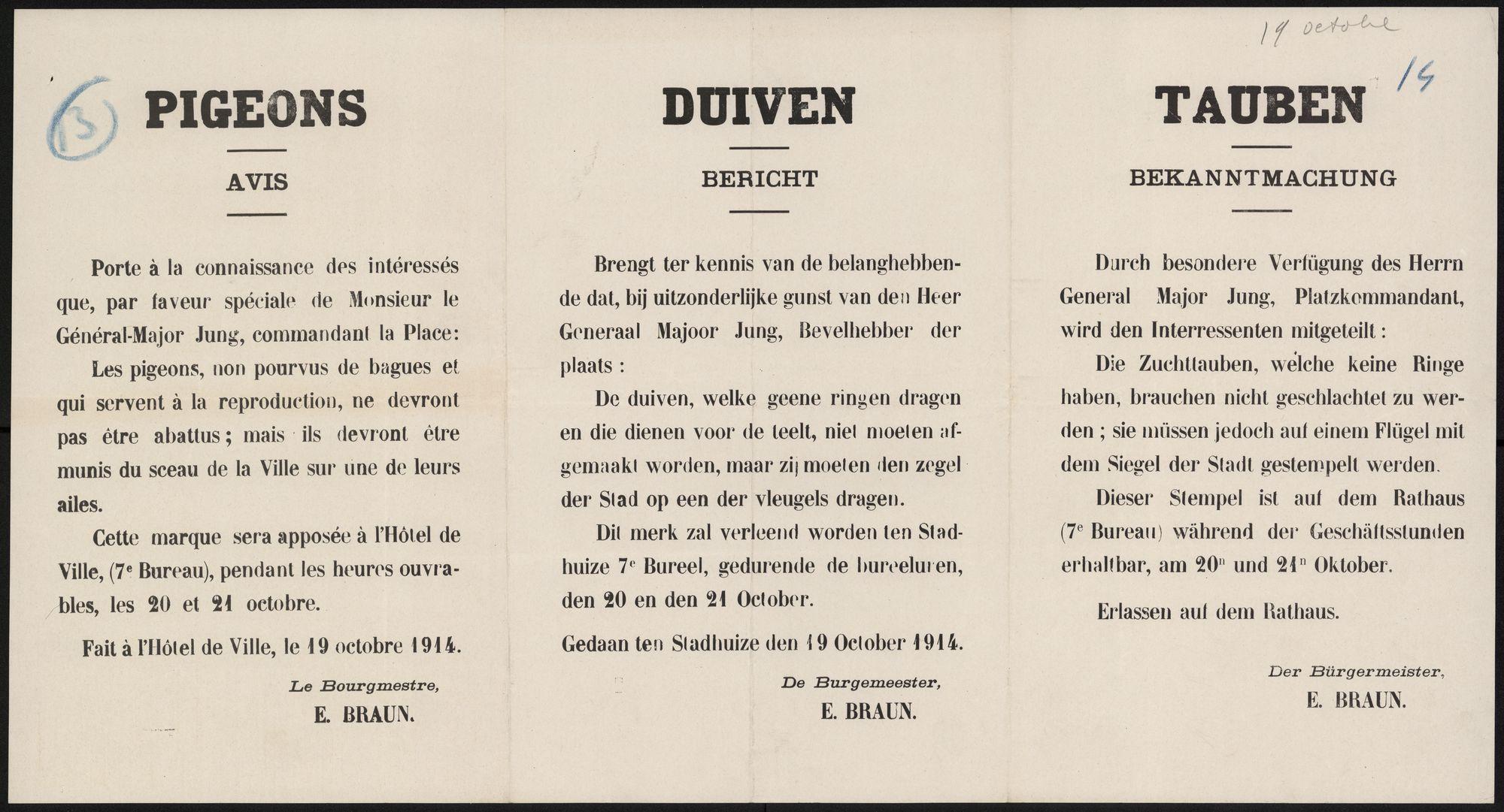 Pigeons, Avis | Duiven, Bericht | Tauben, Bekanntmachung.
