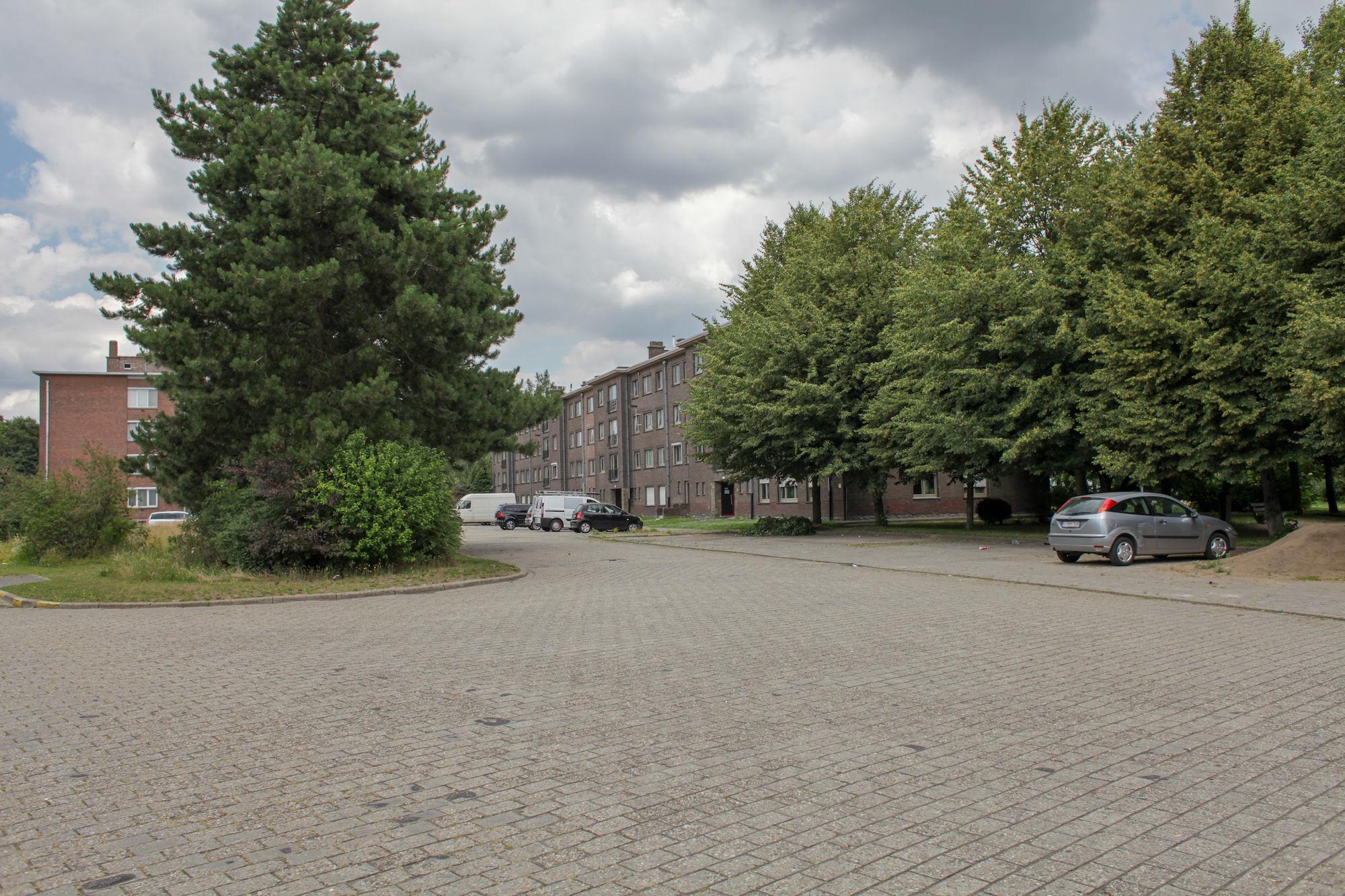 2019-07-02 Muide Meulestede prospectie Wannes_stadsvernieuwing_IMG_0350-2.jpg