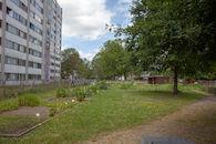 2019-07-01 Nieuw Gent prospectie met Wannes_stadsvernieuwing_IMG_0222-3.jpg