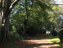 109 Parkje Burggravenlaan (5).jpg