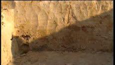 07 Archeologie bij Flanders Expo-MPEG-2 6.2Mbps 2-pass 16:9.m2v