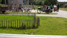 20210817_Oude Dokken_Houtdok_Openbaar Domein_Zitbanken_groen_wandelaars_fietsers_0034.jpg