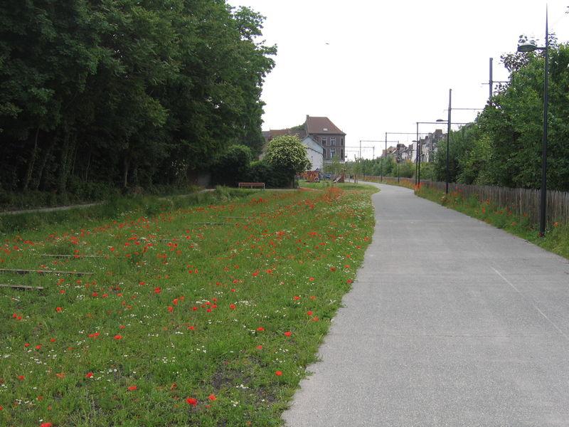 058 Bijgaardepark (7).jpg