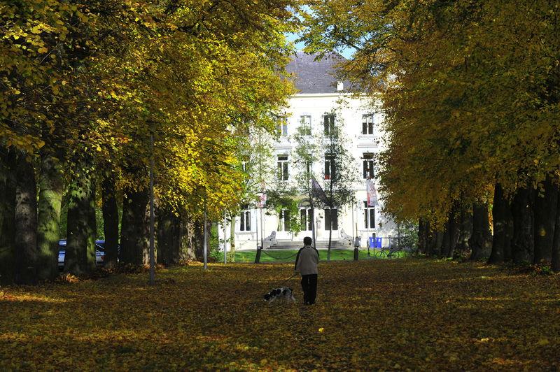 017 Borluutpark - stadsfotograaf (1).jpg