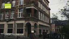 Stad Gent - 021 - Toerisme Veggie - Naturelle.mov