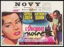 L'Orchidée Noire | De Zwarte Orchidee, Novy, Gent, 1 - 7 april, 1960