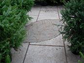 Mystic Leaves 13.jpg