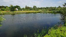 Overmeerspark