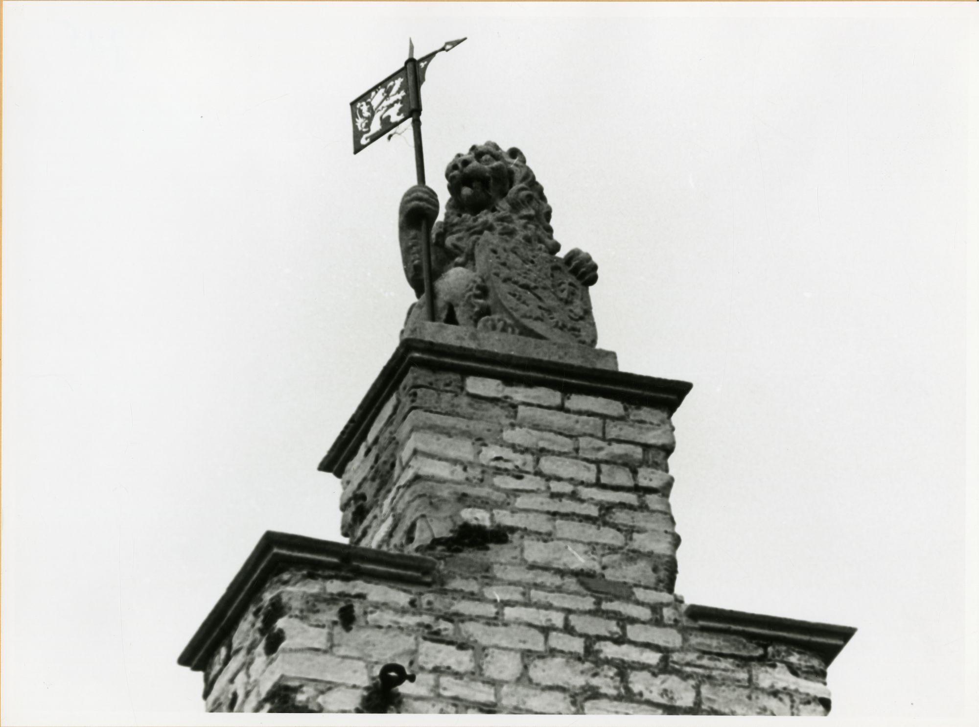 Gent: Groentenmarkt 7: Groot Vleeshuis: standbeeld: Leeuw van Vlaanderen