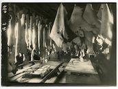 Kwatrecht: leerlooierij van het Duitse leger, 1915-1916