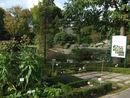 108 Plantentuin Ugent (4).jpg