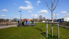 20210817_Oude Dokken_Houtdok_Openbaar Domein_Zitbanken_groen_wandelaars_fietsers_0011.jpg
