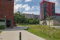 2019-07-01 Nieuw Gent prospectie met Wannes_stadsvernieuwing_IMG_0240-3.jpg