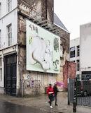 019 - billboard - Kevin Bray - it is a imbroglio