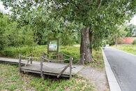 Parkbos - Rosdamstraat
