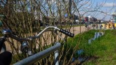 20210817_Oude Dokken_Houtdok_Openbaar Domein_Zitbanken_groen_wandelaars_fietsers_0007.jpg