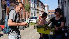 2020-05-29 Ledeberg_Dag van de Buren_bloemen__DSC0465.jpg