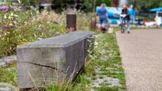 20210817_Oude Dokken_Houtdok_Openbaar Domein_Zitbanken_groen_wandelaars_fietsers_0036.jpg