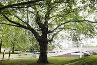 Keizerpark Ledeberg (04)©Layla Aerts.JPG
